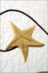 TwilaRustyStar